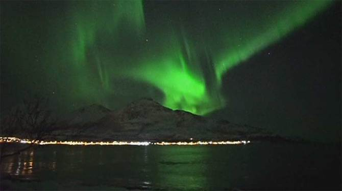 Breathtaking footage captures whales playing under northern lights