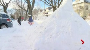 Winter storm dumps 35 cm of snow on parts of Atlantic Canada