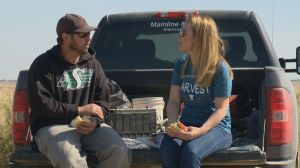 Farm families in Saskatchewan bond over field lunches