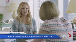 Amy Schumer removes a gun scene from her film after Orlando shooting; swaps job roles with Anna Wintour