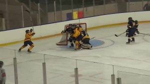Big weekend for the Queen's Lady Gaels in OUA hockey