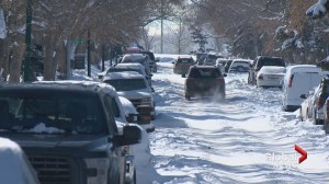 Frustrations grows over City of Calgary's snow removal response
