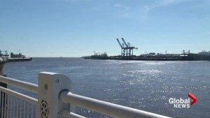 N.B. environmental groups receive federal funding to study Port of Saint John ecosystem
