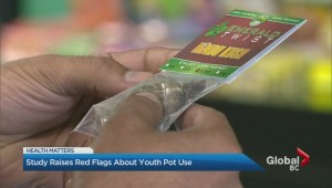 Study raises red flags about youth pot use