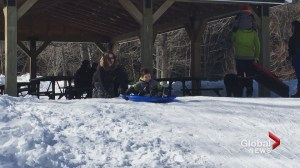 New Brunswickers enjoy sunshine and first annual Family Day