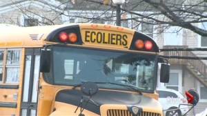 Province debates Francophone and English school buses