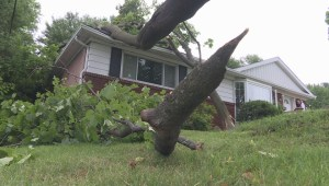 Clean up begins after powerful summer storm
