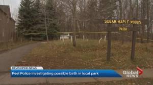 Mother, baby in good health after evidence of childbirth found in Mississauga park