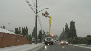 Ice storm leaves thousands without power in Fraser Valley