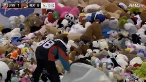 With over 34,000, Hershey Bears game sets 'Teddy Bear Toss' world record