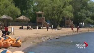 Saint-Zotique beach off limits after E.coli outbreak