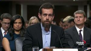 Twitter founder says 'bad actors gamed Twitter' during 2016 election