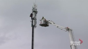 Worker rescued by Toronto firefighters after getting stuck on cellphone tower