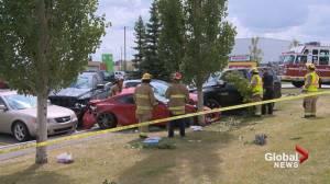 Man dead after southeast Calgary crash
