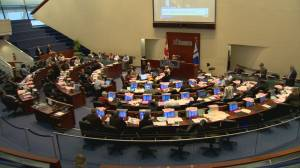 New report details roadmap for smaller Toronto City Council