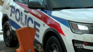 2nd man arrested in Kingston, Ont., 'attack plot' released without charge, RCMP say