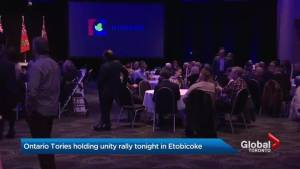 Doug Ford supporters come out for Ontario PC Party 'unity rally'