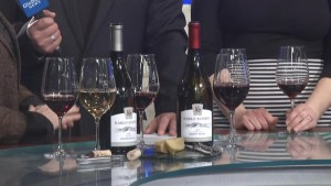 Global News Morning  has a preview of Knifey Spooney's Vegan Wine and Cheese event