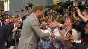 Prince Harry and Prince William surprise crowds in Windsor ahead of Royal Wedding