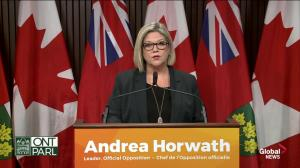 Andrea Horwarth calls for creation of committee to oversee hiring of OPP chief