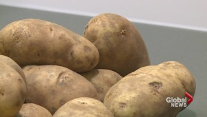 RCMP investigate nails found in potatoes