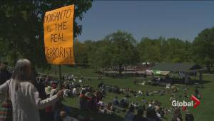 Worldwide protests against American agrochemical giant Monsanto