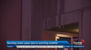 Weather believed to be to responsible for burst Calgary pipes