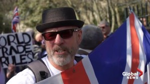 Thousands of Brexiters gather in London for 'March to Leave'