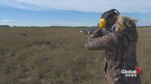 Sixth annual Taber Pheasant Festival focuses on education