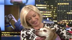 Randene Neill's surprise reunion with Ginger the kissing pit bull