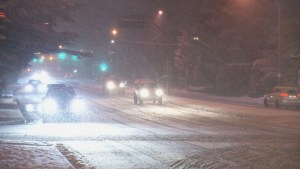 Another blast of winter hits B.C.'s South Coast