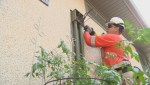 SaskPower is warning residents to check their meters