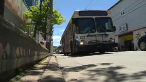 Perspective on Halifax Transit changes