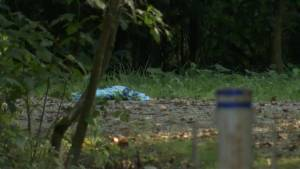 10-year-old girl mauled by bear in Port Coquitlam