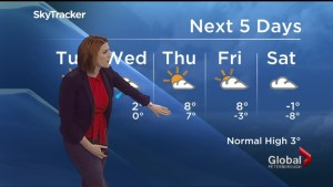 A high of 8°C expected by the end of the week