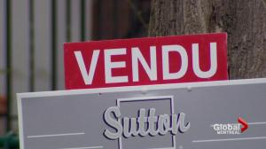 Increasing real estate prices in Montreal