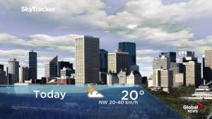Edmonton early morning weather forecast: Monday, June 3, 2019