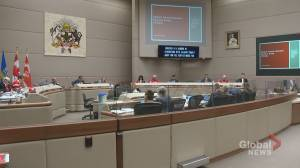 Groups plead for funding, spending cuts as Calgary's budget debate starts