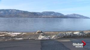 Kelowna dog beach closed next week