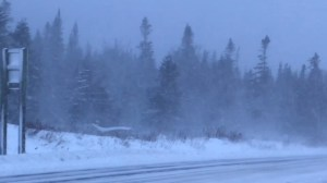 Snow and hurricane-force winds pelt Newfoundland during winter storm