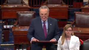 Schumer warns Trump that 'history is watching'