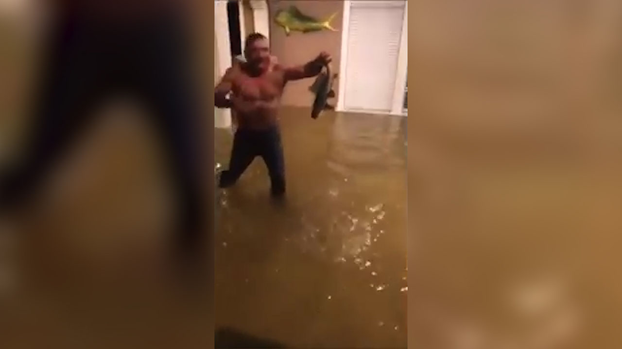 Man catches fish in Houston home flooded by Hurricane Harvey