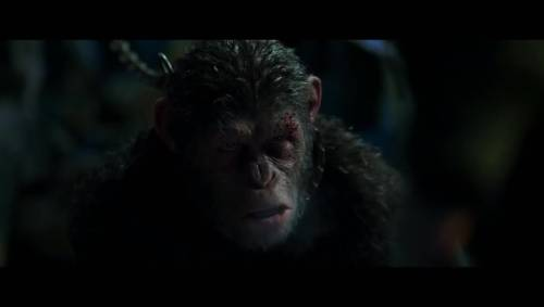 Planet of the apes rtp
