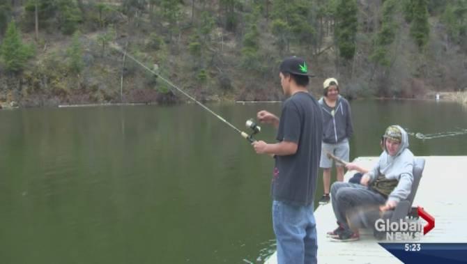 Thousands of fish released into okanagan lakes and ponds for Koi pond kelowna