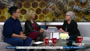 'Franklin the Turtle' author Paulette Bourgeois' new book