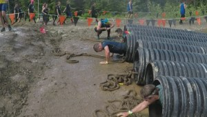 Tough Mudder returns to Whistler