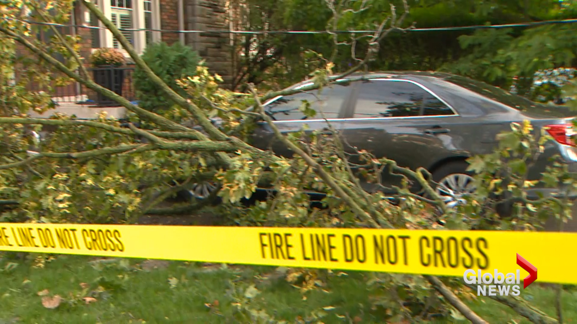 Sunday's Strong Wind Knocks Out Power - Snaps Trees