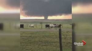 Tornado caught on camera in south Sask. (00:30)