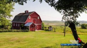 Heritage Barns of Flagstaff looks to preserve part of rural Alberta's history