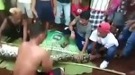 People work to cut out Indonesian woman found dead inside belly of giant python